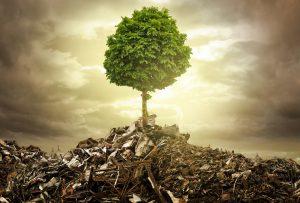 waste-tree
