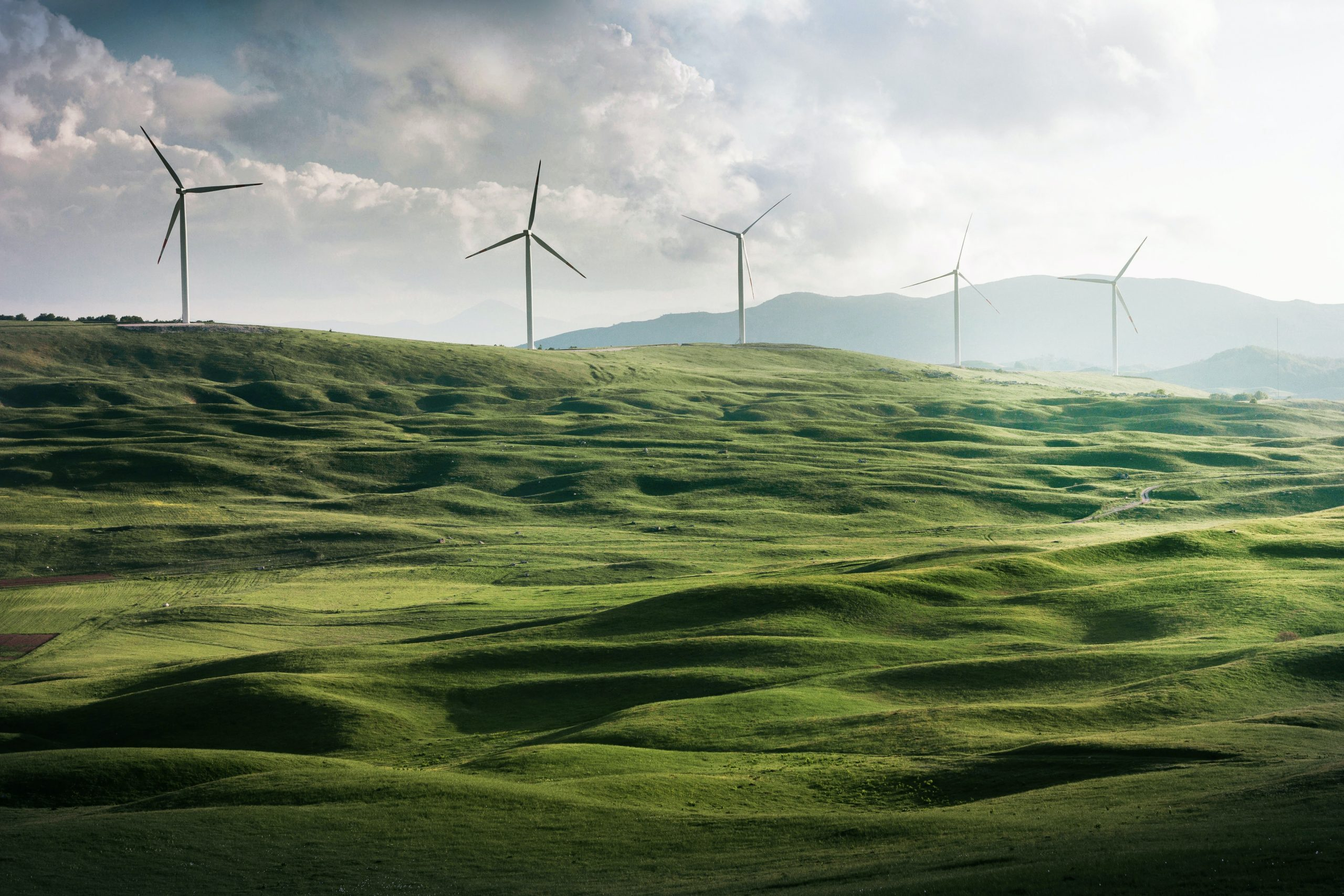 Renewable energy: leading an industry-wide transformation