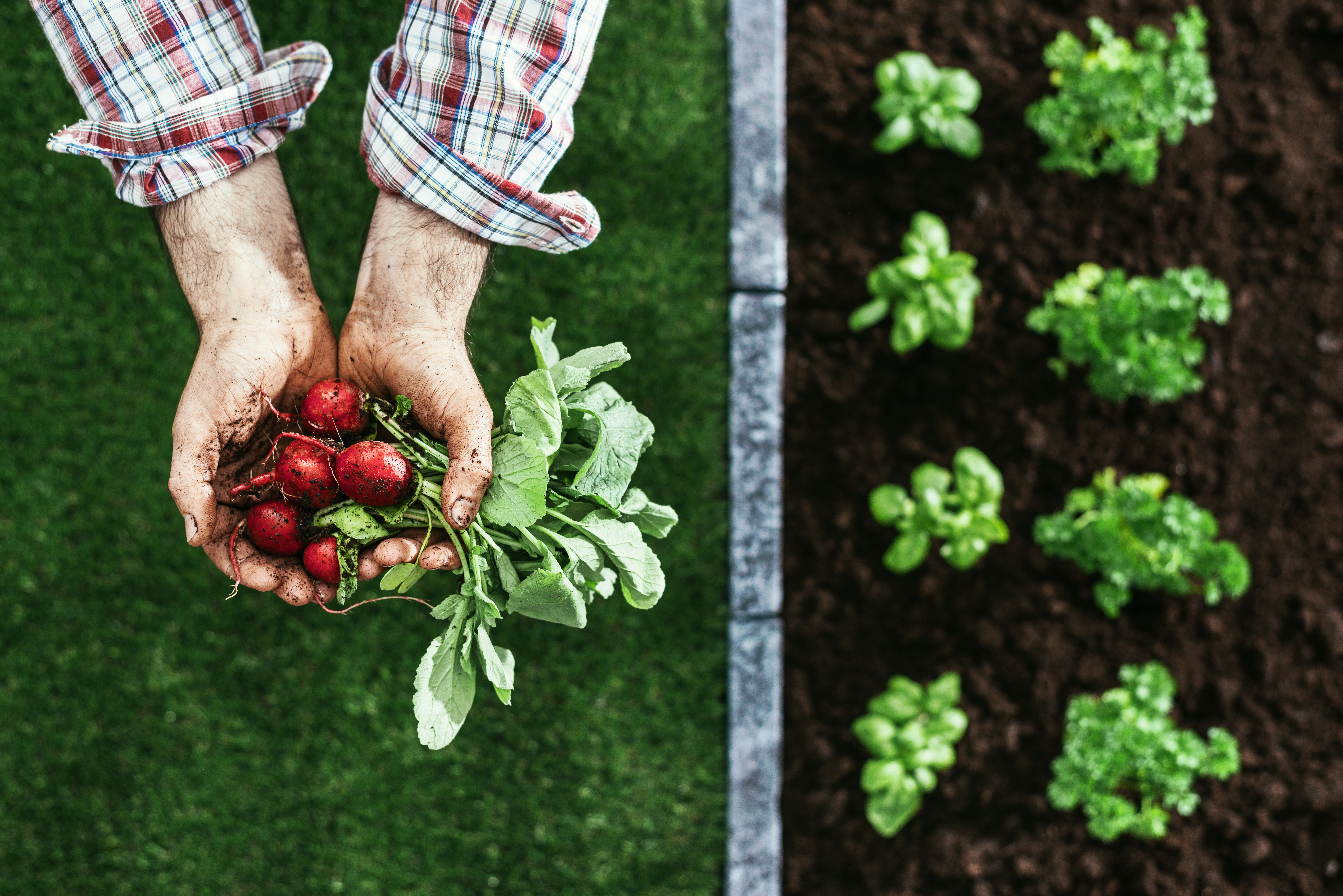UK restaurants: Putting sustainability on the menu