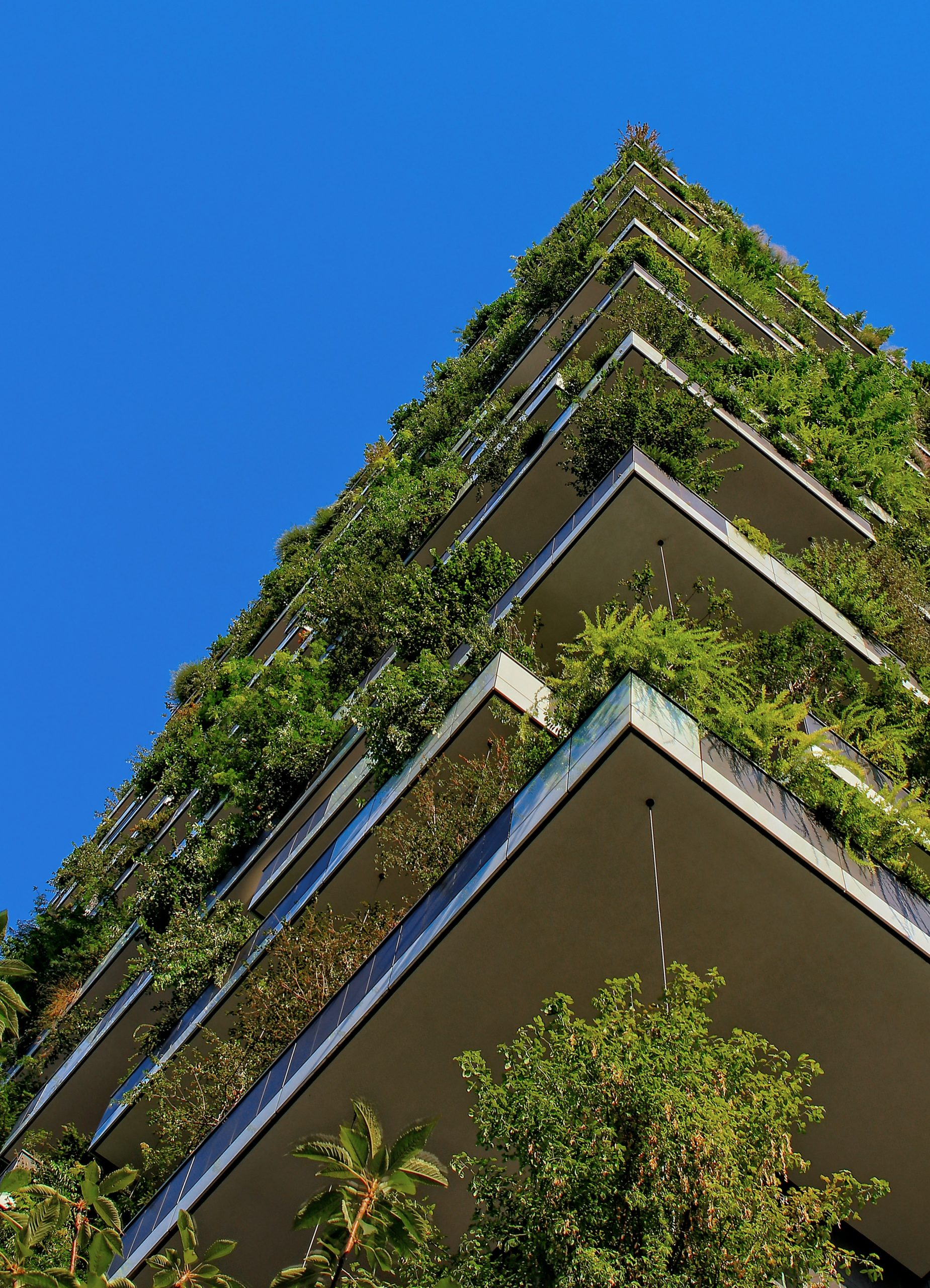 The Green Bond Scheme: what is it and how does it impact UK savers?